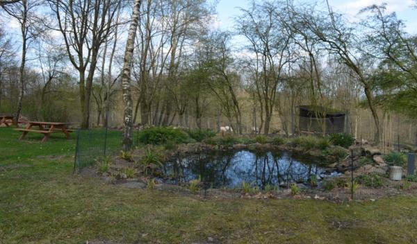 Klinik Deerth - Teich